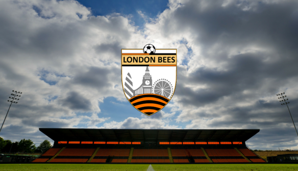 London Bees supporters survey