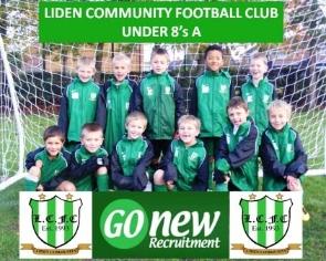 Liden Community u8 A