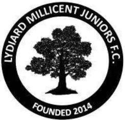 New Players Wanted - LMJFC U13's
