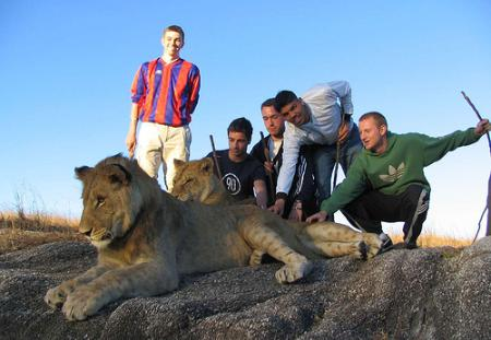 ADAM IN THE LIONS' DEN - news image